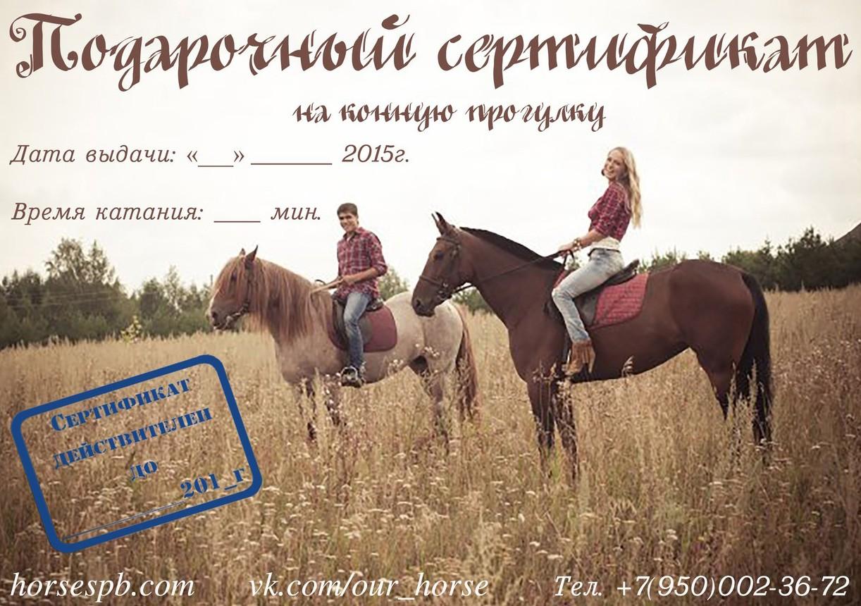 Подарочный сертификат на катание на лошадях