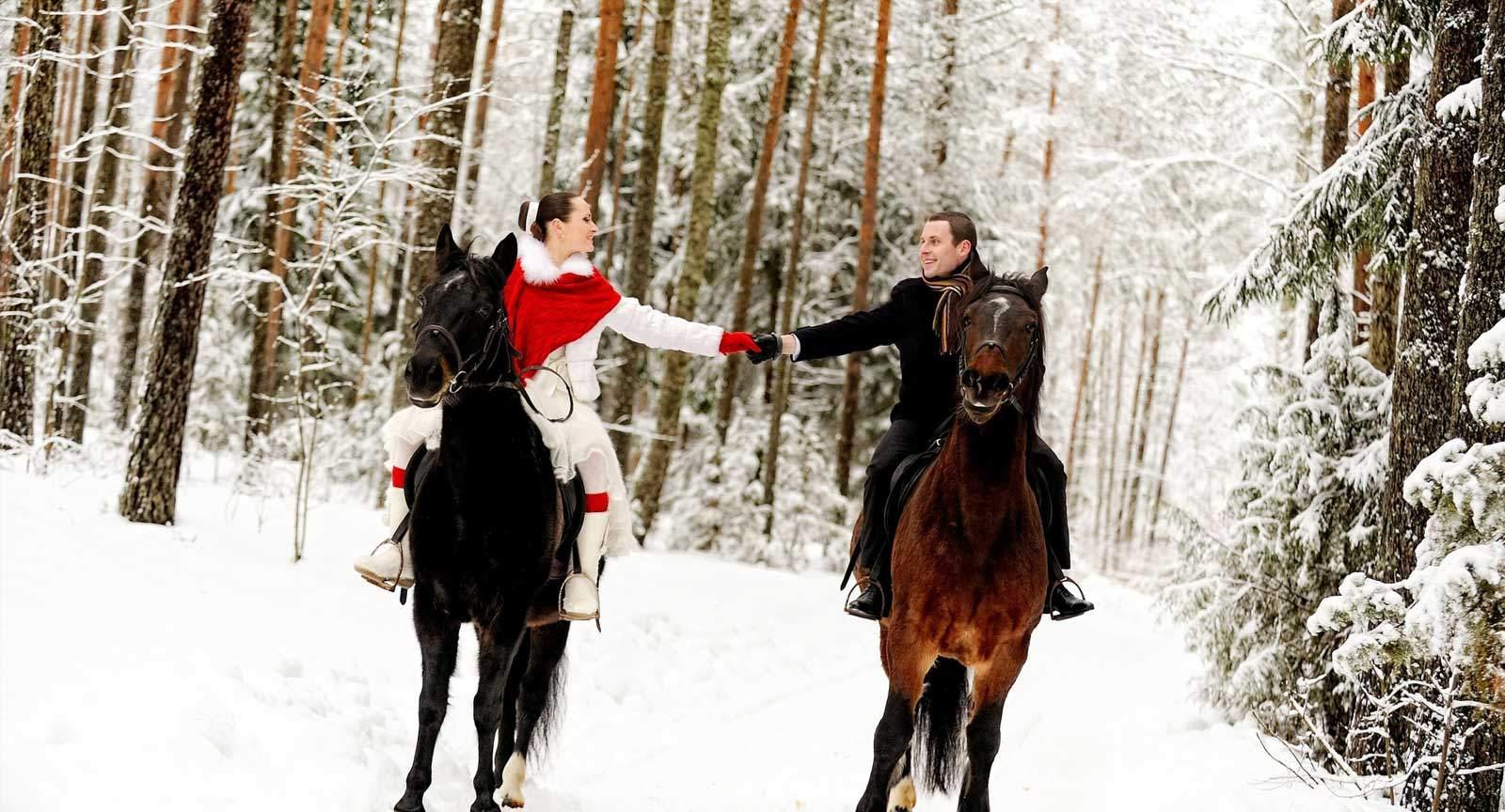 конные прогулки спб