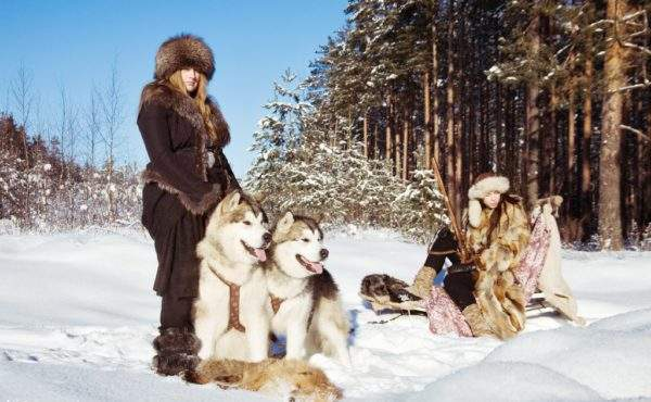 Катание на хаски в Ленинградской области